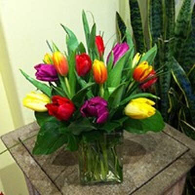 15 TULIPS IN A VASE from Redwood Florist in New Brunswick, NJ