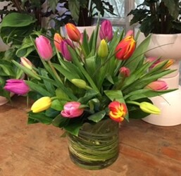 25 TULIPS IN A VASE  from Redwood Florist in New Brunswick, NJ