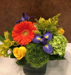 4X4 RIBBED CUBE BRIGHT MIX  from Redwood Florist in New Brunswick, NJ