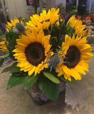 SIMPLY SUNFLOWERS from Redwood Florist in New Brunswick, NJ