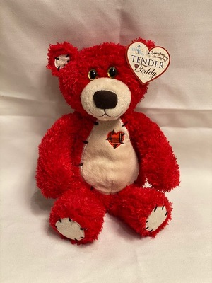 "RED TENDER TEDDY 8"" from Redwood Florist in New Brunswick, NJ"